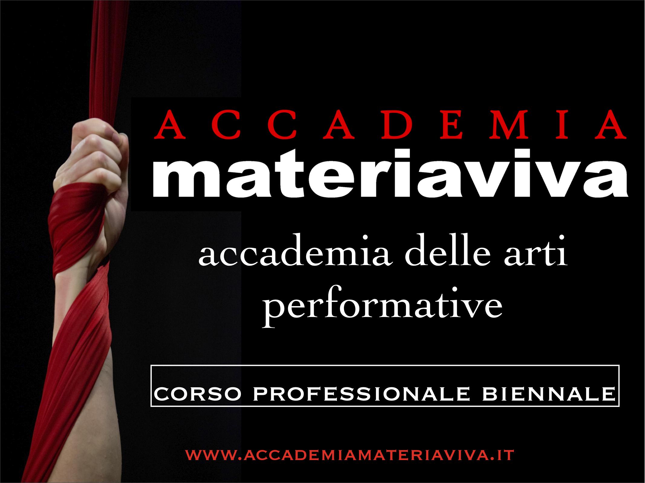Corso Professionale biennale dell'Accademia
