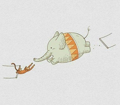 Intensivo di acrobatica aerea per principianti